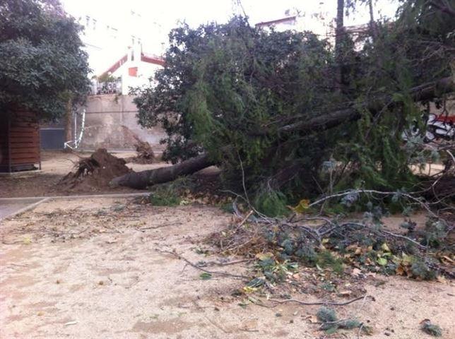 Nota de premsa sobre els danys i perjudicis provocats pel temporal de vent